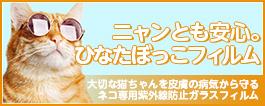 猫を紫外線の病気(扁平上皮癌、日光皮膚炎、日光過敏症など)から守る「ニャンとも安心。ひなたぼっこフィルム